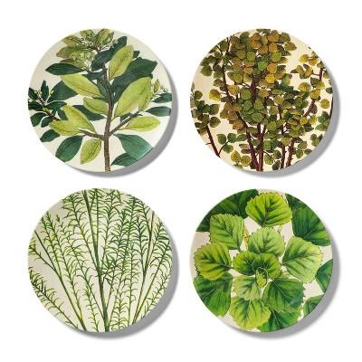 4pk Melamine Dinner Plate Set Leaf Print Green/White - John Derian for Target