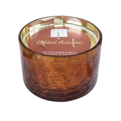 16.9oz Coffee Table Jar 3-Wick Candle Gilded Autumn - Chesapeake Bay Candle