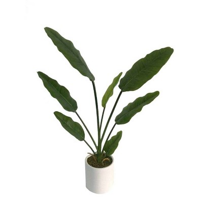 2.2' Artificial Banana Tree in Pot Green/White - Project 62™