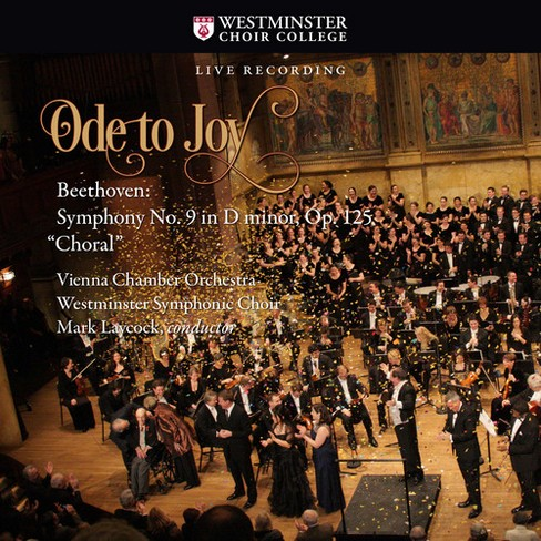 Vienna Chamber Orche - Beethoven:Sym No 9 In D Minor Op 125 (CD) - image 1 of 1