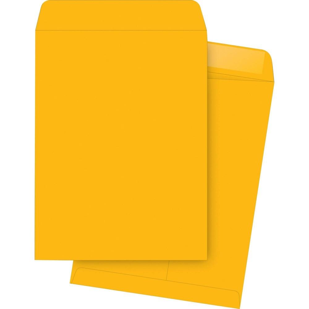 Business Source 250ct Kraft Gummed Catalog Envelopes