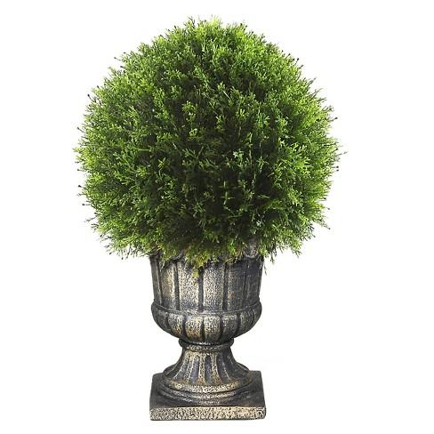 Upright Juniper Ball Topiary Tree In A Decorative Urn 27 Target