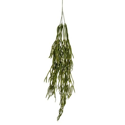 "Vickerman 36"" Green Trailing Grass Spray. - image 1 of 2"