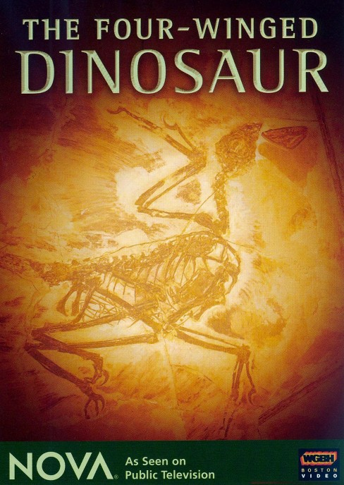 Four-winged dinosaur (DVD) - image 1 of 1