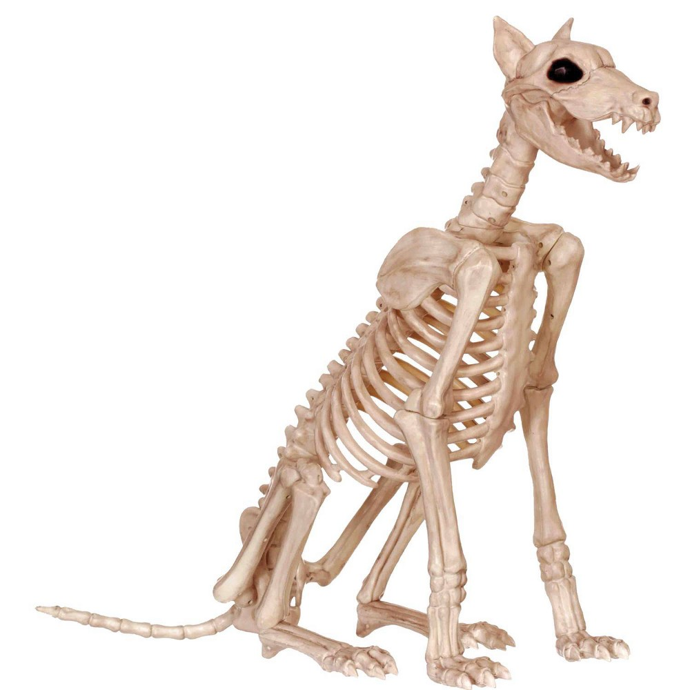 Image of Halloween Skeleton Doberman