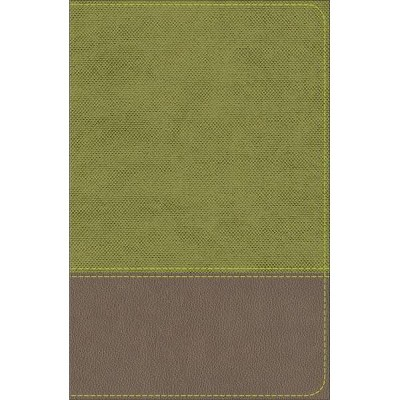 KJV Study Bible for Boys : KJV Study Bible for Boys Olive/Brown Leathertouch - (Paperback)