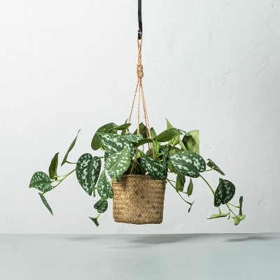 Faux Variegated Pothos Leaf Hanging Plant - Hearth & Hand™ with Magnolia