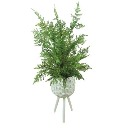 """46"""" x 18"""" Artificial Fern Leather Leaf Plant in Basket Stand White - LCG Florals"""