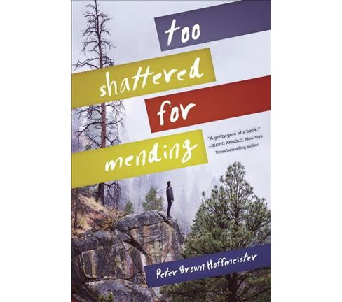 Too Shattered for Mending -  by Peter Brown Hoffmeister (Hardcover) - image 1 of 1
