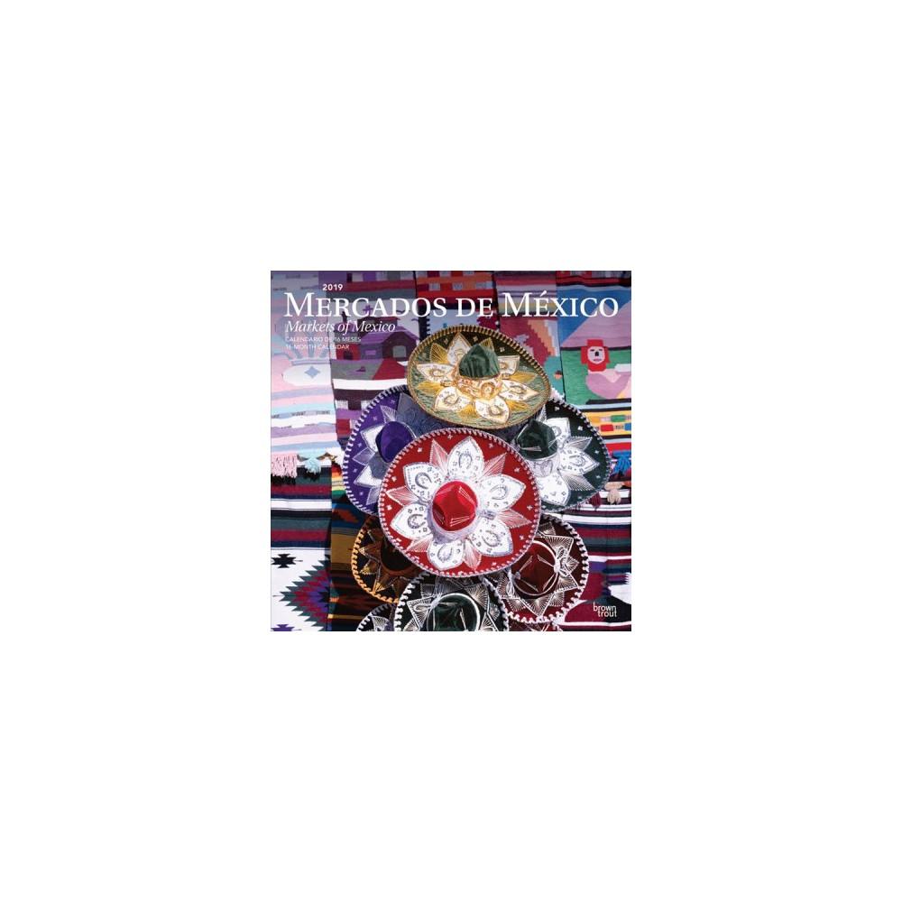Mercados De Mexico/ Markets of Mexico 2019 Calendar - (Paperback)