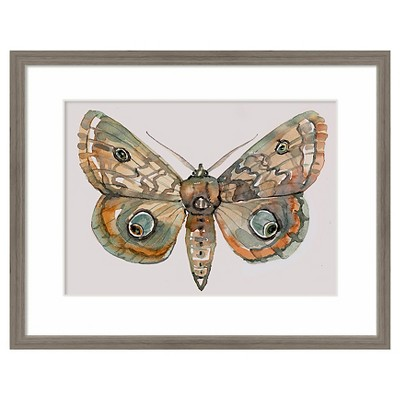 Framed Watercolor Butterfly 14 x11  - Threshold™