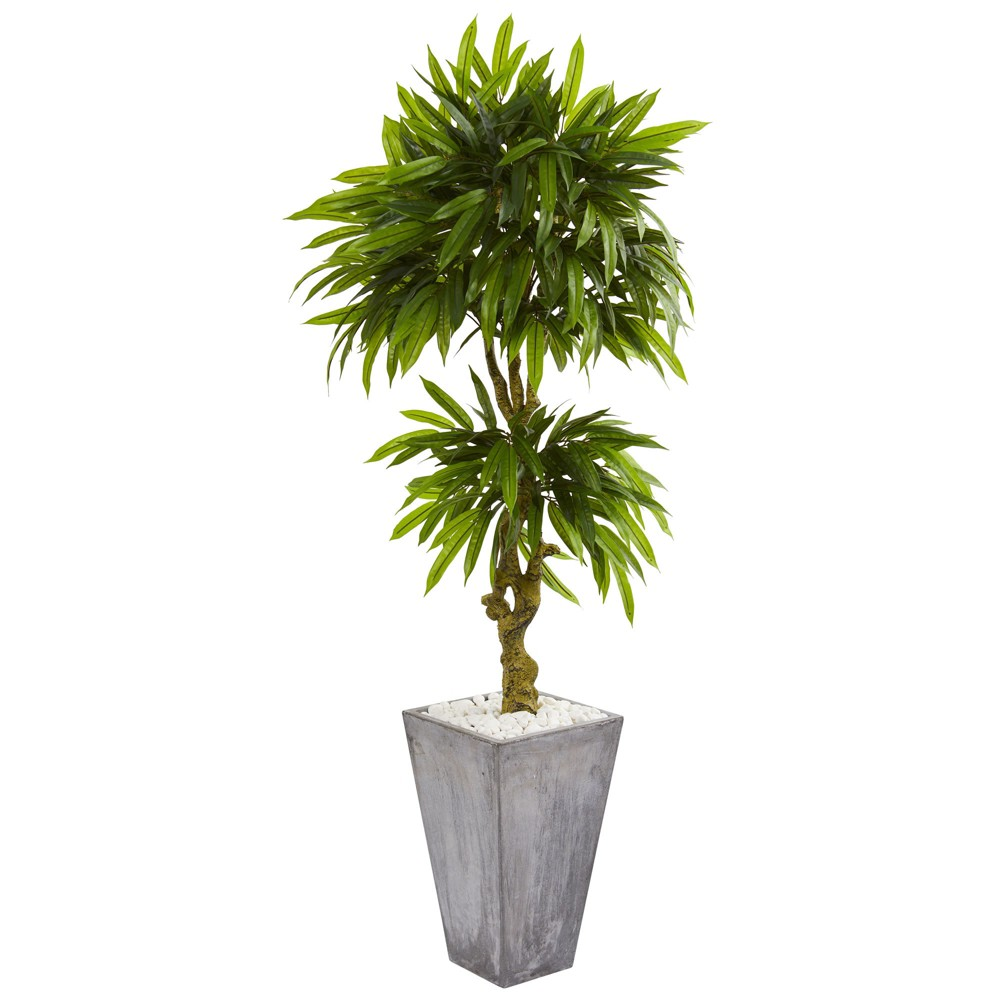 5.5ft Mango Artificial Tree In Concrete Planter - Nearly Natural, Green