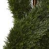 5' Pond Cypress Spiral Topiary UV Resistant (Indoor/Outdoor) - image 2 of 3