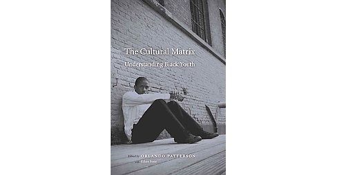 Cultural Matrix : Understanding Black Youth (Reprint) (Paperback) - image 1 of 1