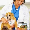 Frontline Plus Flea and Tick Treatment for Dogs - 3 doses - image 4 of 4