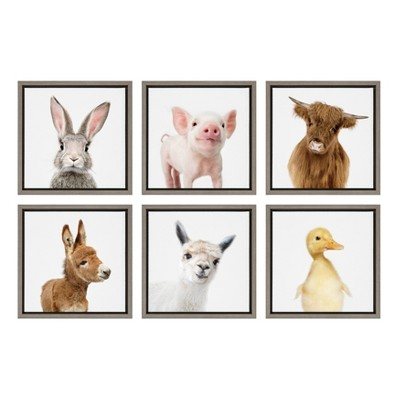"""6pc 13"""" x 13"""" Sylvie Farm Animals Framed Canvas Art Set by Amy Peterson Gray - Kate and Laurel"""