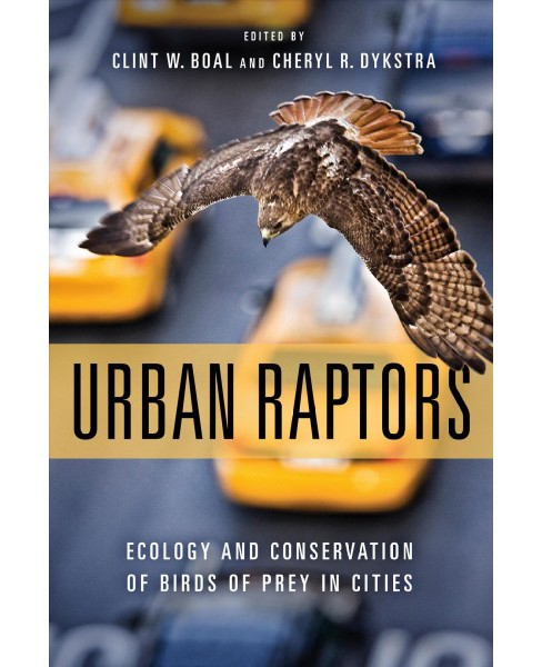 Urban Raptors : Ecology and Conservation of Birds of Prey in Cities -  (Paperback) - image 1 of 1