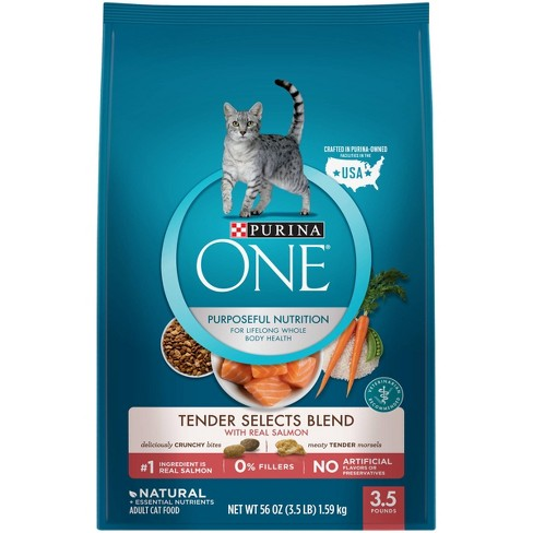 Purina ONE Tender Selects Blend with Real Salmon Adult Premium Dry Cat Food - image 1 of 4