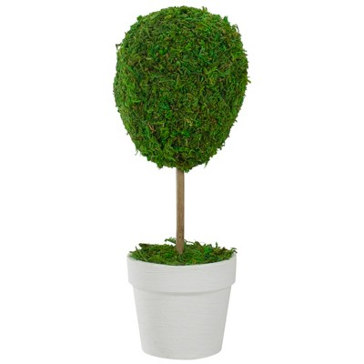 "Northlight 14"" Reindeer Moss Ball Potted Artificial Spring Topiary Tree - Green/White"