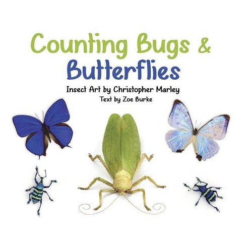 Counting Bugs and Butterflies - by  Zoe Burke (Board_book) - image 1 of 1