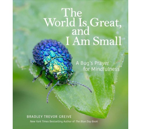 World Is Great, and I Am Small : A Bug's Prayer for Mindfulness (Hardcover) (Bradley Trevor Greive) - image 1 of 1