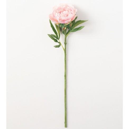 Sullivans Artificial Peony Stem 24 H Pink Flowers Target