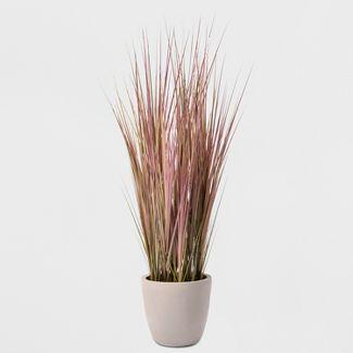 4 Potted Grass - Lloyd & Hannah