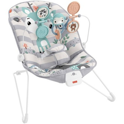 ​Fisher-Price Baby Bouncer