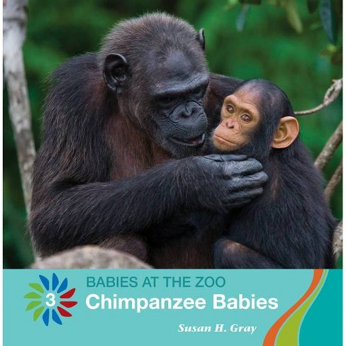 Chimpanzee Babies - (21st Century Basic Skills Library: Level 3: Babies at the Zoo) by  Susan H Gray - image 1 of 1