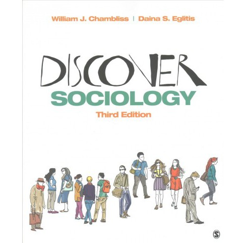 Discover Sociology (Paperback) (William J. Chambliss & Daina S. Eglitis) - image 1 of 1