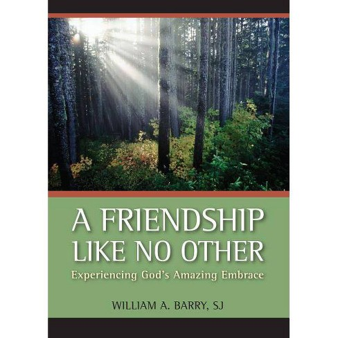 A Friendship Like No Other - by  William A Barry (Paperback) - image 1 of 1