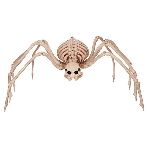 Halloween Skeleton.Halloween Skeleton Spider