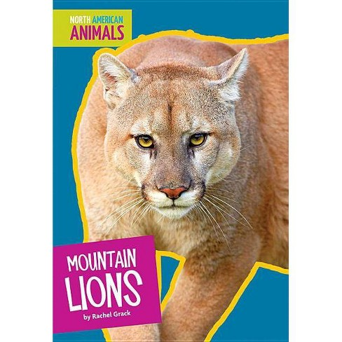 Mountain Lions - (North American Animals) by  Rachel Grack (Paperback) - image 1 of 1