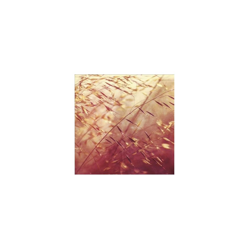 Secret Pyramid - Two Shadows Collide (Vinyl)