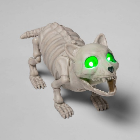 Small Animated (Lights/Sound) Cat Skeleton Halloween Decorative Prop - Hyde & EEK! Boutique™ - image 1 of 2