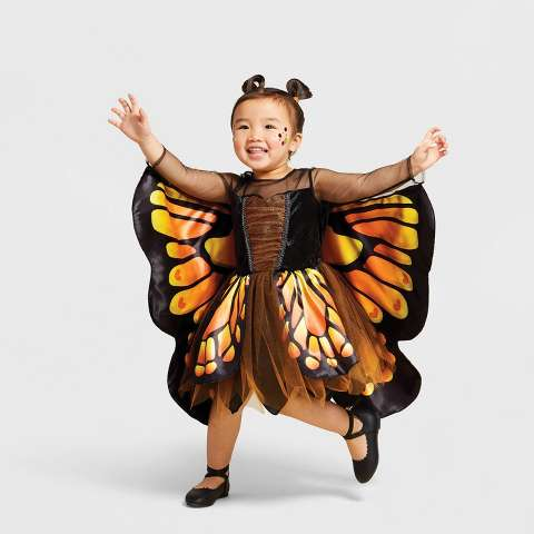 Toddler Monarch Butterfly Halloween Costume - Hyde & EEK! Boutique™