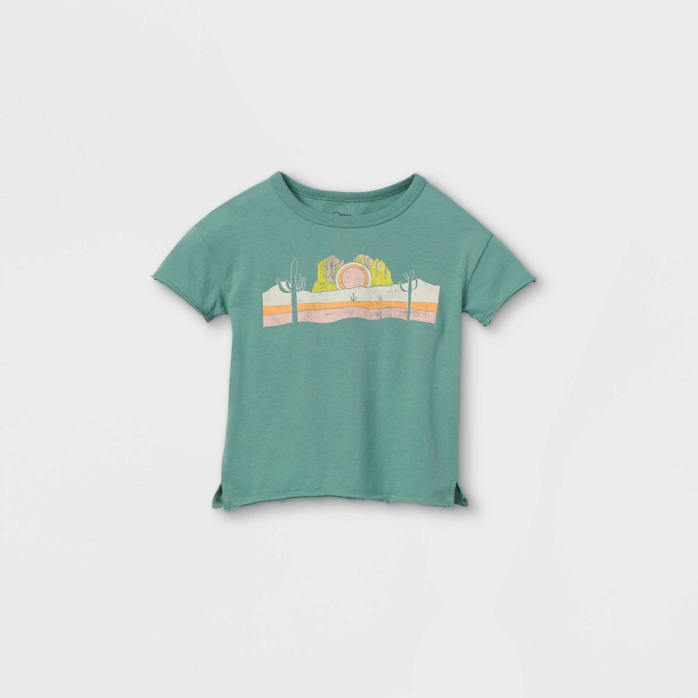 Toddler Desert Short Sleeve T Shirt Art Class 8482 Teal 12m