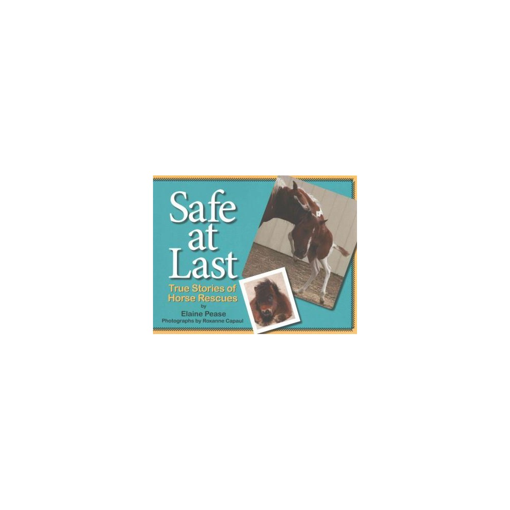 Safe at Last : True Stories of Horse Rescues (Paperback) (Elaine Pease)