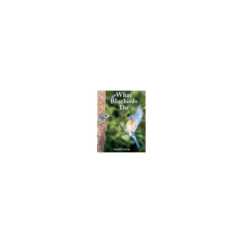 What Bluebirds Do (Reprint) (Paperback)