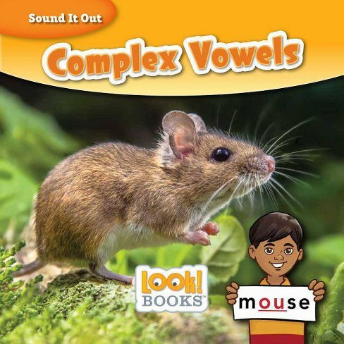 Complex Vowels - (Sound It Out (Look! Books (Tm))) by  Wiley Blevins (Hardcover) - image 1 of 1