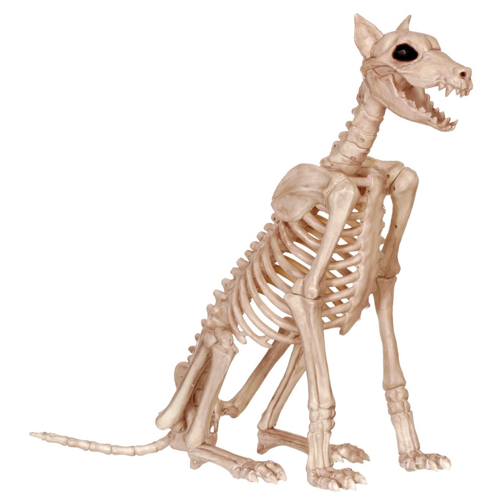 Image of Halloween Skeleton Doberman, Beige
