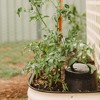 Tumbleweed Worm Feast In Ground Home Outdoor Raised Vegetable Garden Farm Recycle Organic Waste Composter - image 3 of 4