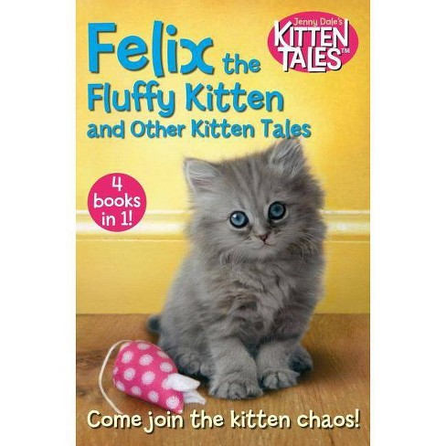 Felix the Fluffy Kitten and Other Kitten Tales - by  Jenny Dale (Paperback) - image 1 of 1