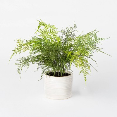 "12"" x 10"" Artificial Fern Plant in Pot Green/White - Threshold™ designed with Studio McGee"
