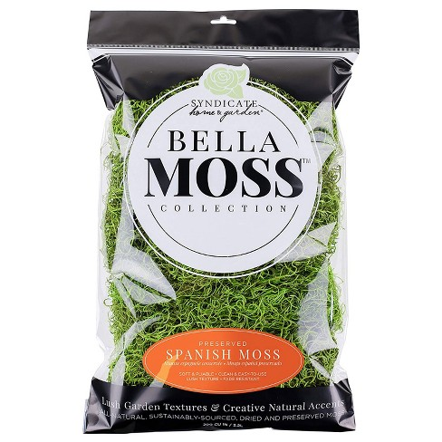 Syndicate Home & Garden Bella Moss Collection Long-Lasting Preserved Spanish Moss Floral Accent, Green, 200 cu Bag - image 1 of 1