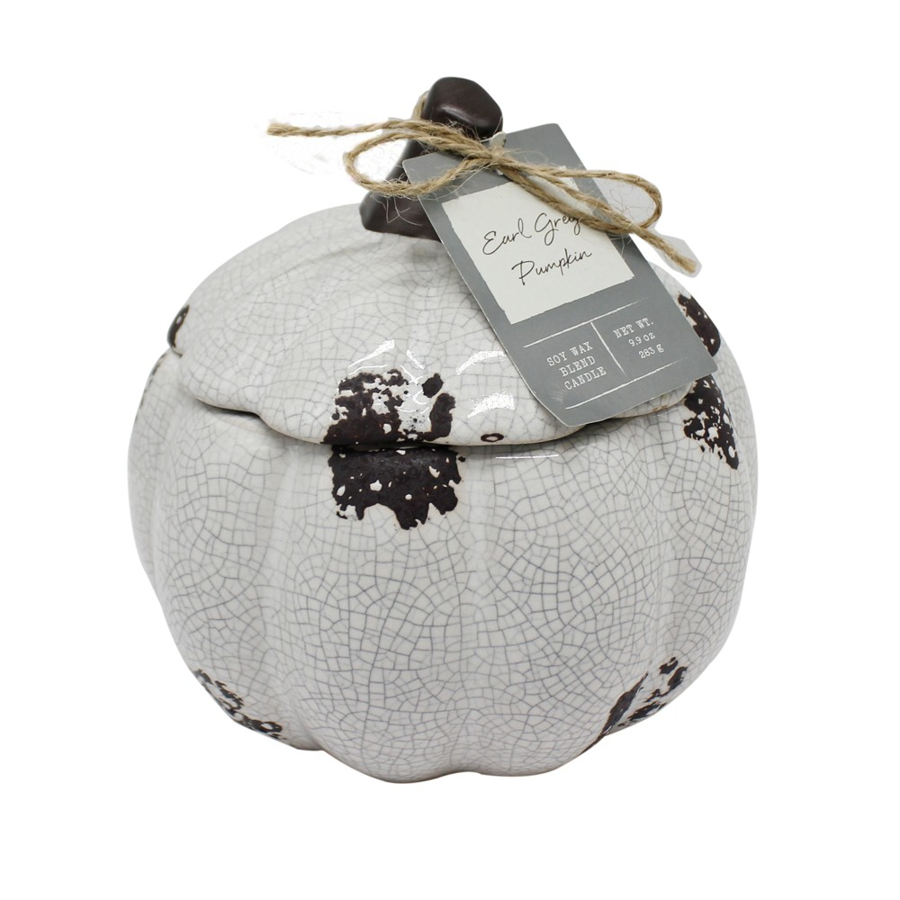 12.3oz Ceramic Pumpkin Jar Candle Earl Grey Pumpkin - Chesapeake Bay Candle, Dark Gray