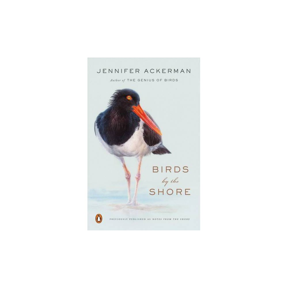 Birds by the Shore : Observing the Natural Life of the Atlantic Coast - by Jennifer Ackerman (Paperback)