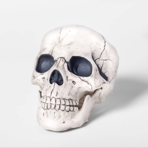 Skull Decorative Halloween Prop Medium - Hyde & EEK! Boutique™ - image 1 of 2