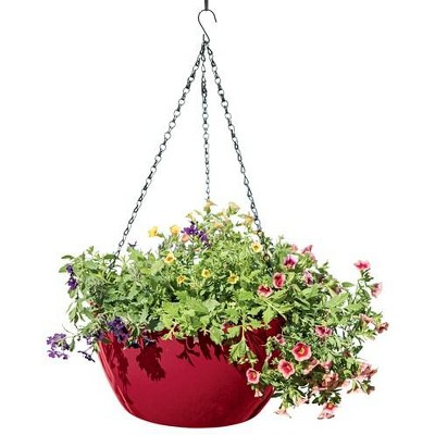 Viva Self-Watering Hanging Basket, 14 Inch - Gardener's Supply Company