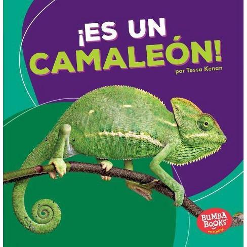 Ï¿½es Un Camale�n! (It's a Chameleon!) - by  Tessa Kenan (Paperback) - image 1 of 1